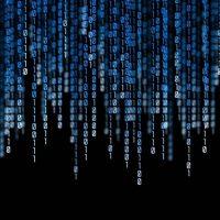 Binary – доверять или нет, изучаем отзывы в сети