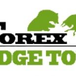 Форекс брокер Hedge Total