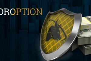 Торговля бинарными опционами на официальном сайте TorOption